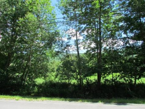 1050 Plunkton Road Warren VT 05674