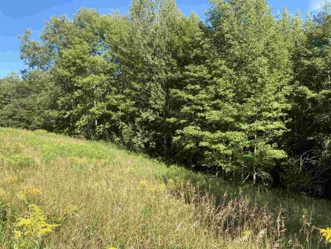 Little Village Road Danby VT 05739