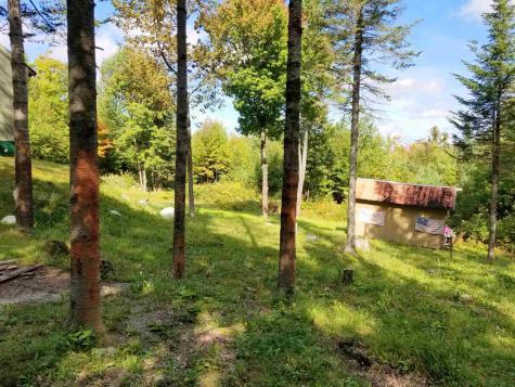 1344 Corey Hill Road Newbury VT 05051