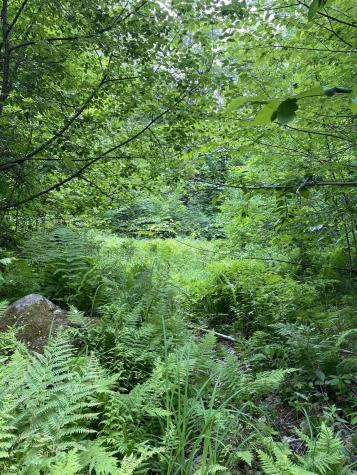 Old Range Road Sanbornton NH 03269