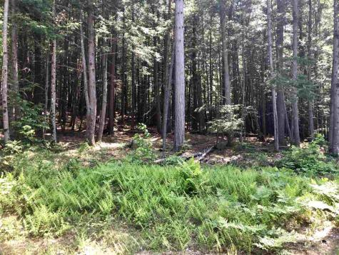 Lot 75.3 Crown Ridge Conway NH 03860