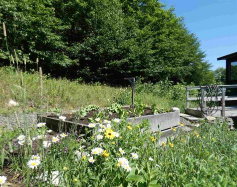691 Cemetery Street Brookfield VT 05036