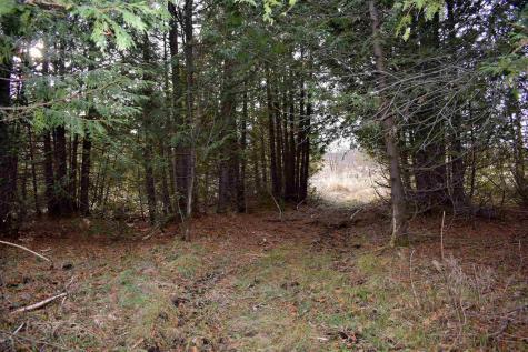 Gaskell Hill Road Burke VT 05871