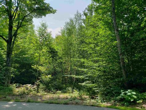 R8 45A Maple Ridge Road Sandwich NH 03227
