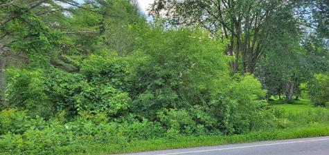 Route 30 N Castleton VT 05735