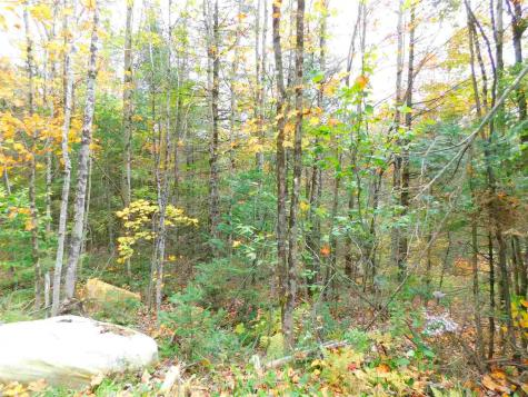 153 French Hollow Winhall VT 05340