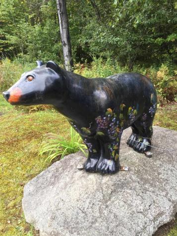6 Bear Paw Left Road Dover VT 05356