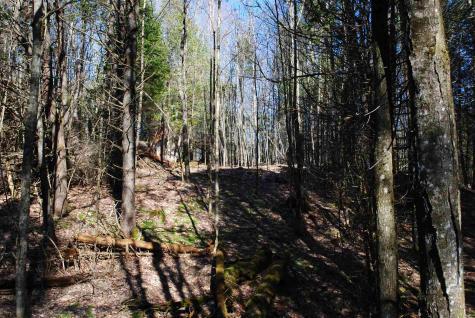 369 Morses Mill Danville VT 05828