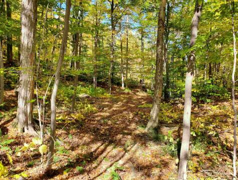123 Trailside Drive Killington VT 05751