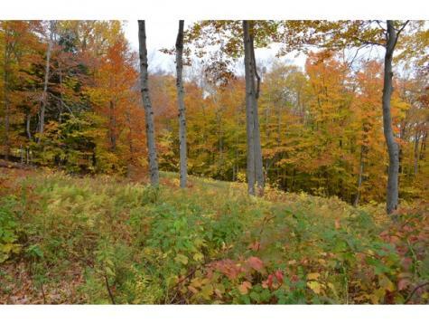 Route 66 Road Ludlow VT 05149