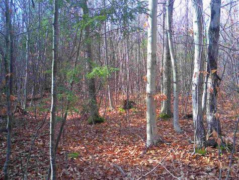 Lot 38 White Mountain Highway Wakefield NH 03872