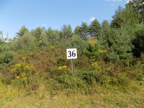 Lot 36 Pemigewasset Drive Conway NH 03818