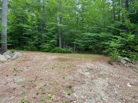 Wolf Hill Road/Old County Road Deering NH 03244