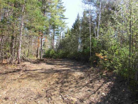 Stump Road Errol NH 03579