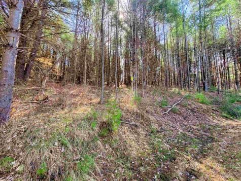 205 Slack Hill Road Royalton VT 05068