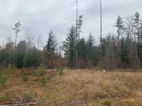 Map 9, Lot 42 Parker Mountain Strafford NH 03884