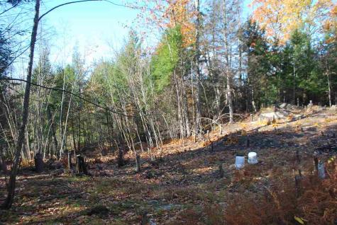 Lot 30-04 Mellesh Road Langdon NH 03602