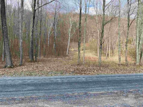 Wilcox Road Arlington VT 05250
