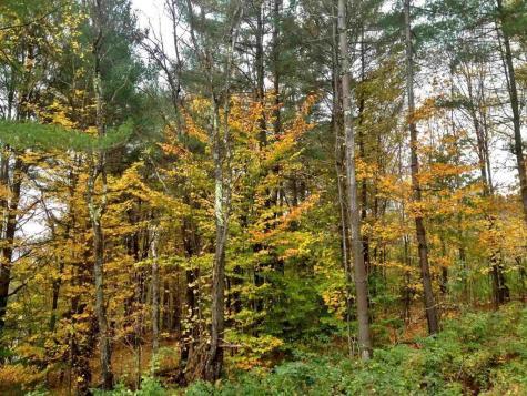 109 Mountainside Drive Stowe VT 05672