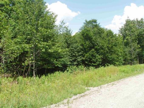 Moose Hollow Road Winhall VT 05340