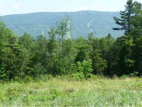 Vermont Route 11 Londonderry VT 05148