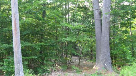 Lot 12 Suncook Valley Alton NH 03809