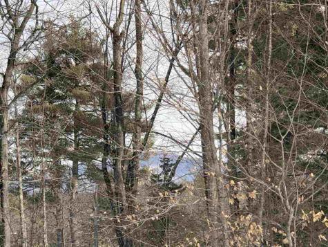 Shaw View Drive Tuftonboro NH 03816