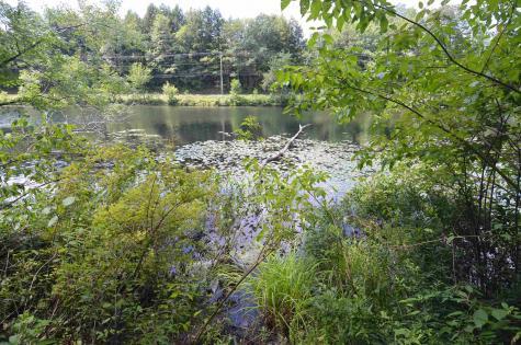 56 Lake Pauline Road Ludlow VT 05149