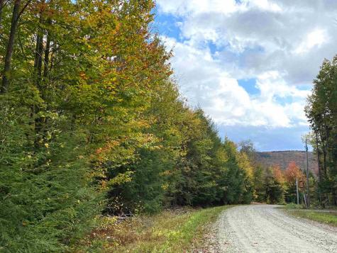 lot 121/122 Kerri Ann Drive Stratton VT 05360