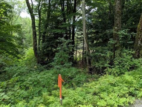 575 Hawk Mountain Pittsfield VT 05762