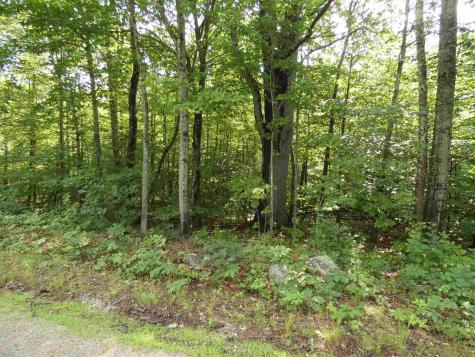 539 Governor Wentworth Highway Moultonborough NH 03254