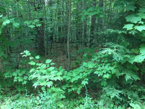 Map 8 - Lot 18 Youngtown Road Alton NH 03809