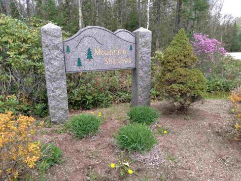 14 Partridgeberry Circle Tuftonboro NH 03816