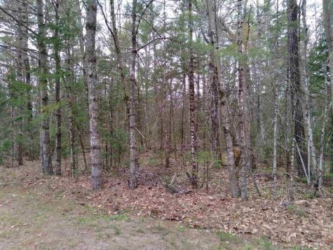 Lot 14 Partridgeberry Circle Tuftonboro NH 03816