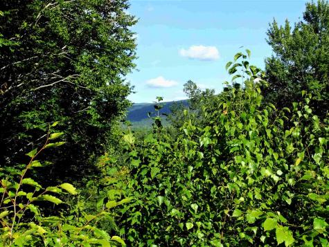 Lot#2 Walnut Court Arlington VT 05250