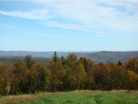 Lot 5 Streeter Farm/Hammond Hill Road Wardsboro VT 05360