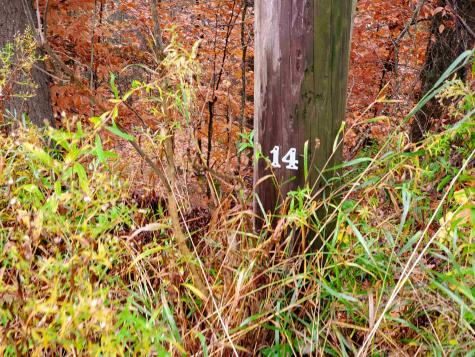 1730 Kittridge Pasture Road Reading VT 05062