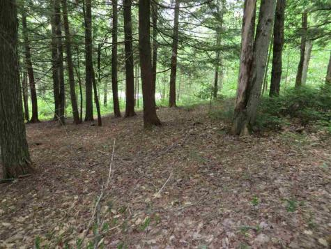 Lot # 3 Hunker Road Winhall VT 05340