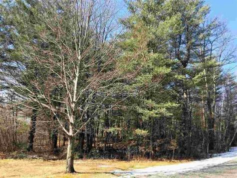 Lot 11 Furnace Brook Road Shaftsbury VT 05262