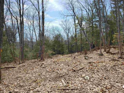 Lot 15 G Buzzell Ridge Road Sandwich NH 03227