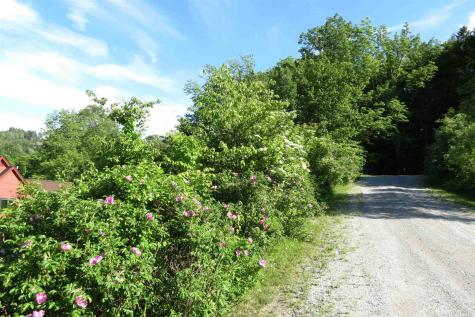 41 John Deere Road Ludlow VT 05149