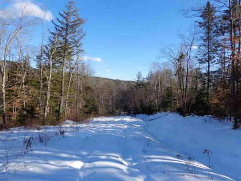 Lot 2 North Groton Groton NH 03241