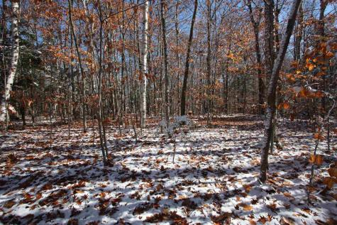 Lot 15 Deepwoods Circle Winhall VT 05340
