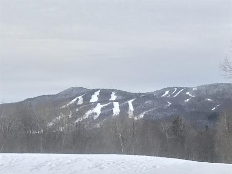 6 Fawn Run Wilmington VT 05363