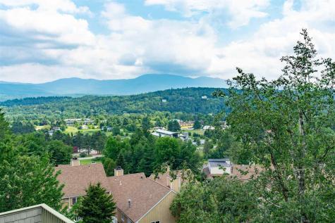 220 Mountainside Drive Stowe VT 05672