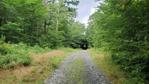 Manning Road Townshend VT 05353