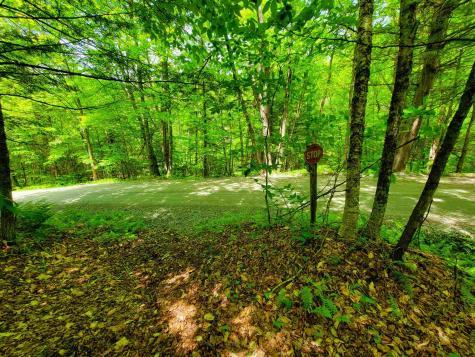 200 Bruorton Hill Road Braintree VT 05060