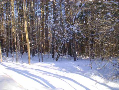 Lot 1 Bertha Springs Road Waitsfield VT 05673
