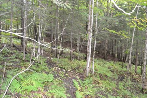 Off Valley View Circle Barre Town VT 05641
