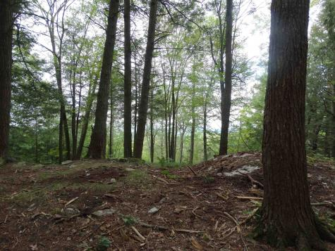 lot C and C2 Lawes Drive Williston VT 05495